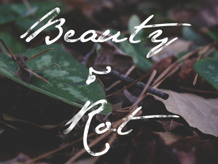 Beauty & Rot